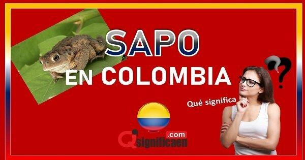 significado de  sapo en colombia