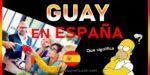 significado de guay en españa